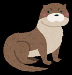animal_kawauso