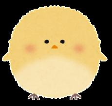 bird_maruitori
