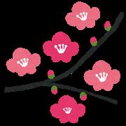 flower_ume