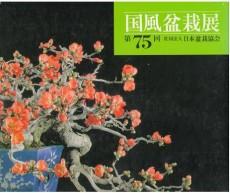 kokufuubonsai-75